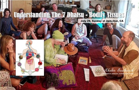 Understanding the 7 Dhatsu - Bodily tissues.