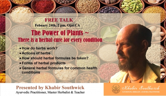 The power of plants: There is an herbal cure for every health condition.